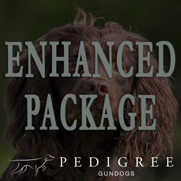 Pedigree Gundogs - Enhanced Package